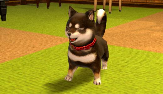 【FF14】漆黒の豆柴!犬ミニオン黒柴のご紹介
