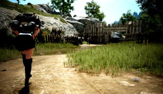 【PS4版黒い砂漠】徒歩貿易で力レベルを上げつつ貿易レベルも上げよう